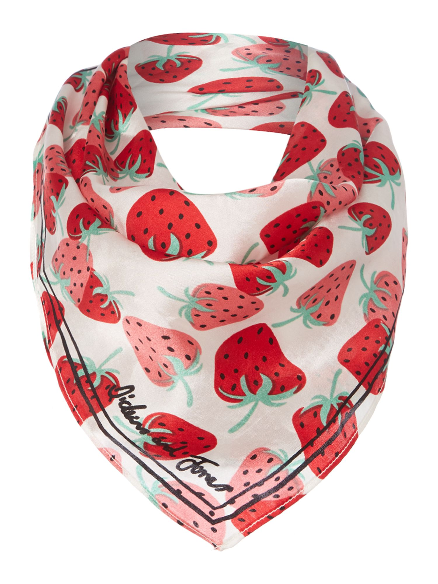Dickins & Jones Strawberry Silk Scarf