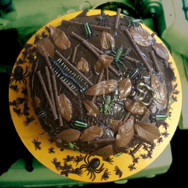 kids bug cake